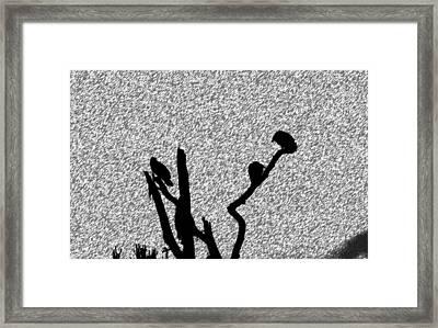 Harsh Weather Framed Print by Juozas Mazonas