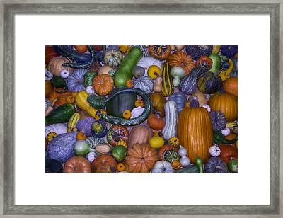 Harvest Abundance  Framed Print by Garry Gay