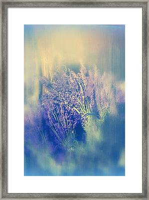 Harvest Framed Print by Connie Handscomb