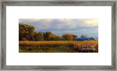 Harvest Framed Print by Elfriede Fulda