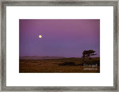 Harvest Moon Over Bodega Bay Framed Print