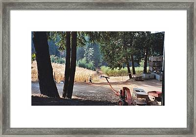 Harvest Time At Apple Hill Framed Print by Dawn Marie Black