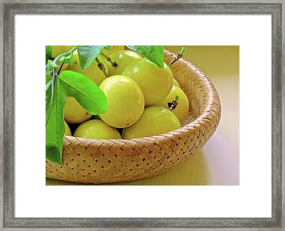 Hawaiian Lilikoi Framed Print by James Temple