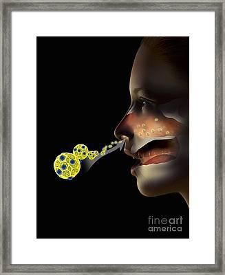 Hay Fever, Artwork Framed Print by Claus Lunau