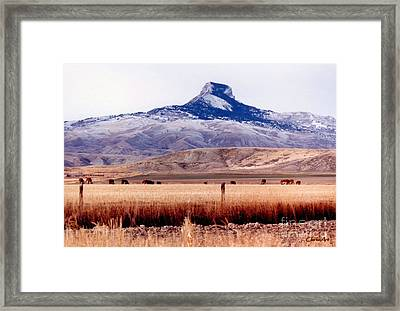 Heart Mountain - Cody,  Wyoming Framed Print