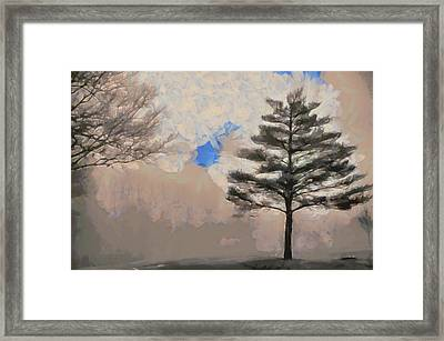 Framed Print featuring the mixed media Hickory by Trish Tritz