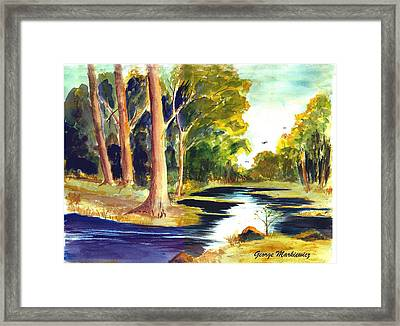 Hidden Glade Framed Print by George Markiewicz