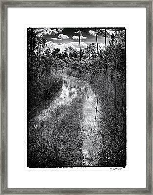 Hiking Trail  Framed Print