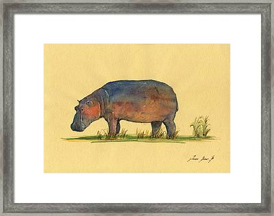 Hippo Watercolor Painting  Framed Print by Juan  Bosco