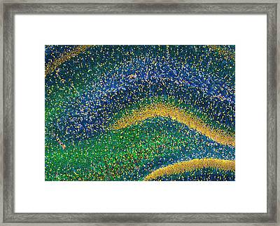 Hippocampus Brain Tissue Framed Print