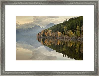 Framed Print featuring the photograph His Reflections by Al Swasey