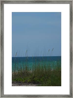 Holmes Beach Florida 2 Framed Print by Lisa Gabrius