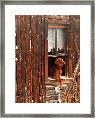 Home Alone Framed Print