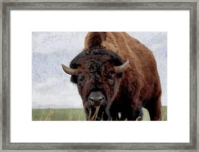 Home On The Range Framed Print
