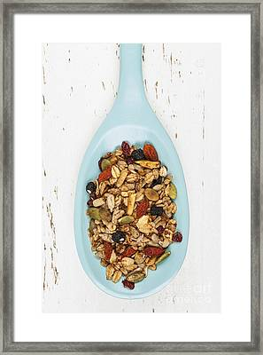 Homemade Granola In Spoon Framed Print by Elena Elisseeva