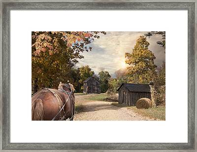 Homeward Bound Framed Print by Robin-Lee Vieira
