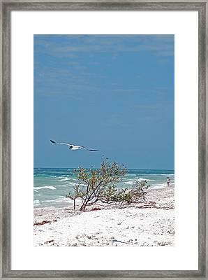 Honeymoon Isle. Framed Print