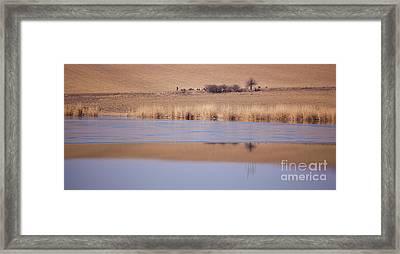 Horia Lake Framed Print by Gabriela Insuratelu