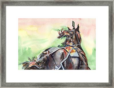 Horse Art In Watercolor Framed Print by Maria's Watercolor