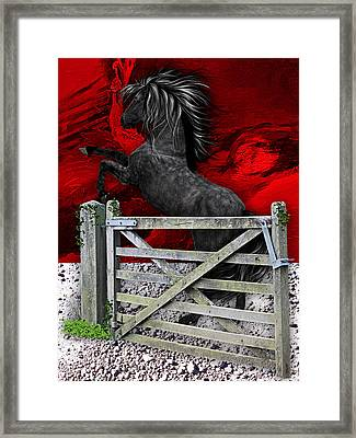 Horse Dreams Collection Framed Print by Marvin Blaine