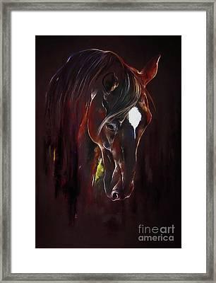 Horse Face Framed Print by Gull G