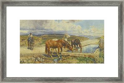 Horses Drinking From A Stone Trough Framed Print