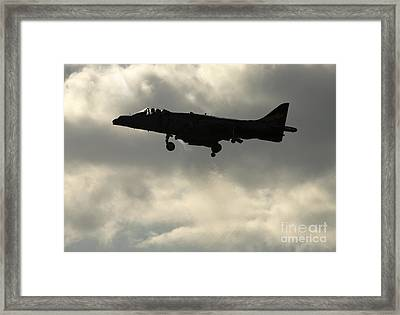 Hovering Framed Print