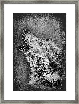 Howling Wolf Framed Print by Andrew Read