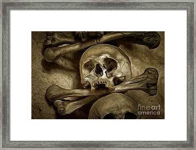 Human Skull And Bones Framed Print by Michal Boubin