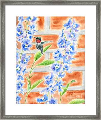 Hummer And Delphiniums Framed Print by Kathryn Duncan