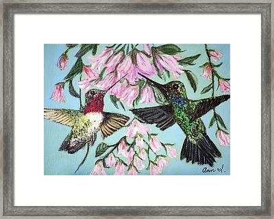Hummingbirds Framed Print by Ann Ingham
