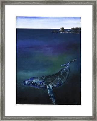 Humpback Whale Framed Print by Anthony Burks Sr