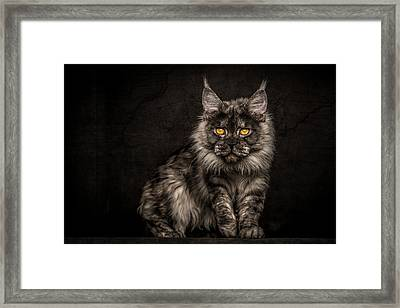 Hunting Mode Framed Print