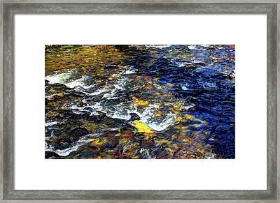 Hyalite Creek Framed Print