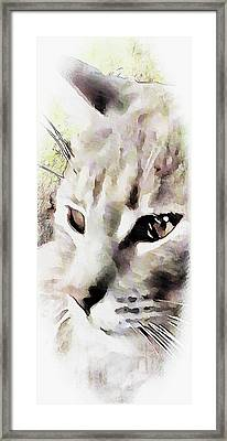 I See You Framed Print by Dorothy Berry-Lound