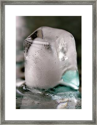 Framed Print featuring the photograph Ice Cube by Rico Besserdich