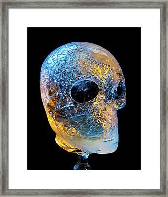 Ice Skull Framed Print