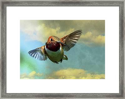 In Flight Framed Print