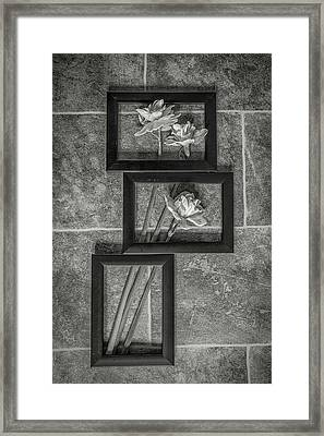 In The Frame Framed Print