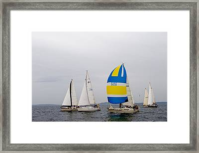 In The Race Framed Print by Tom Dowd