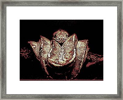 In The Trees Framed Print by Dennis Sullivan