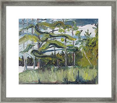 In The Woods Framed Print by Francois Fournier