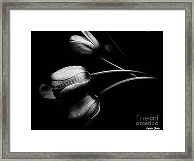 Incognito Framed Print