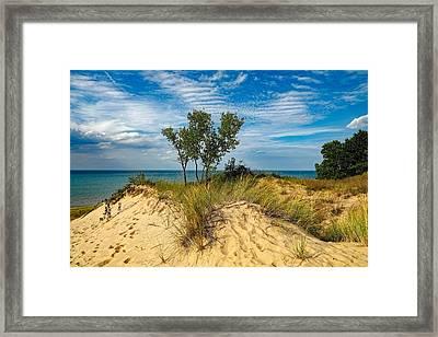 Indiana Dunes State Park Framed Print