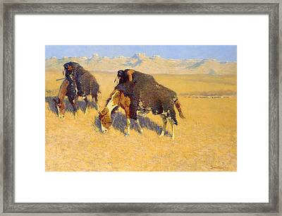 Indians Simulating Buffalo Framed Print by Frederic Remington