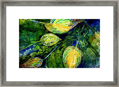 Indriel Blue Hosta Framed Print by Mary Sonya  Conti