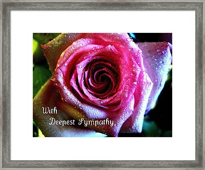 Intense Rose Framed Print