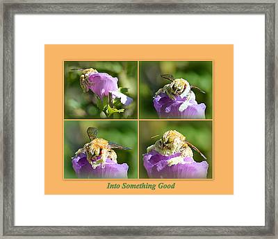 Framed Print featuring the photograph Into Something Good by AJ Schibig