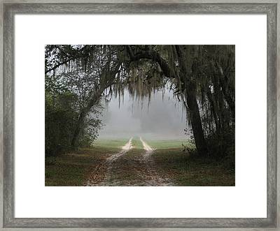 Into The Light Framed Print by Peg Urban