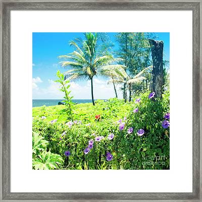 Ipomoea Keanae Morning Glory Maui Hawaii Framed Print by Sharon Mau